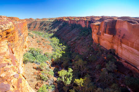 The view into a gorge from a cliff edge at Kings Canyon in Northern Territory, Australia