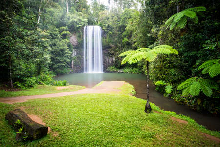 The famous Millaa Millaa waterfall in the Atherton Tablelands area of Queensland, Australia