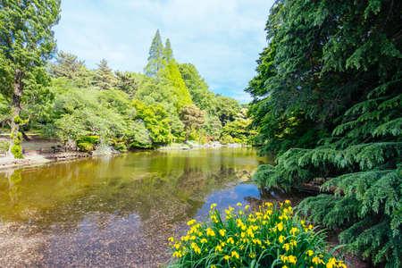Photo pour Shinjuku Gyoen National Garden in Tokyo - image libre de droit