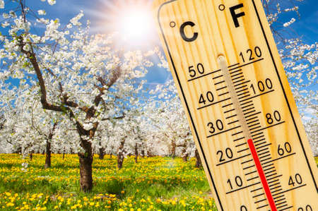 Photo for Warm temperature at spring with fine weather and sun - Royalty Free Image