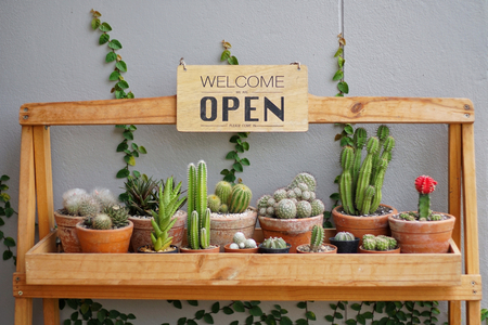 Photo for A business sign 'Open and Welcome' hanging on cactus pots shelve at restaurant entrance. Industry food, Cafe and restaurant idea concept. - Royalty Free Image