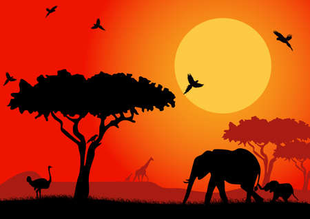 African landscape with silhouettes of animals safari. Vector illustration