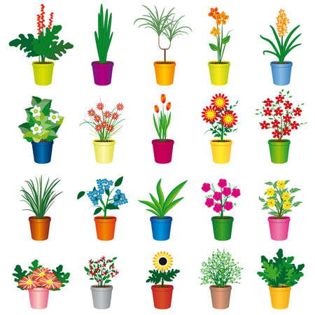 Illustration for A set of colorful pots of flowers. Vector illustration - Royalty Free Image