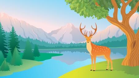 Illustration pour The beautiful landscape of a  mountain lake.  - image libre de droit