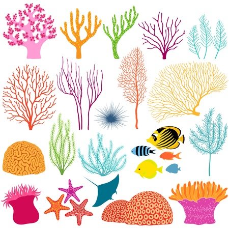 Set of colorful underwater design elements