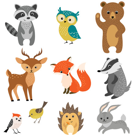 Set of cute woodland animals isolated on white background.