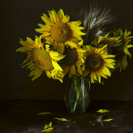 Still life with sunflower and wheat