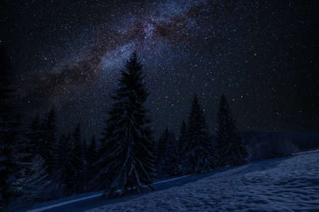 Photo pour Winter landscape with snowy forest and many stars in night sky - image libre de droit