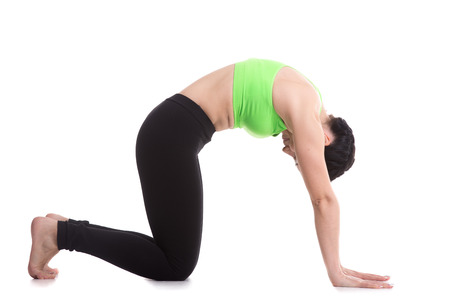 Beautiful sporty girl practices backbend in Cat yoga Pose, Marjaryasana, exercise for flexible spine and shoulders, asana often paired with Cow Pose on the inhale, yoga for relieving stress