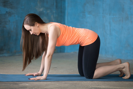 Photo pour Beautiful young woman dressed in bright sportswear enjoying yoga indoors. Standing on hands and knees in Table pose. - image libre de droit