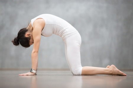 Photo pour Beautiful young woman with tattoo on her foot meaning Wild cat working out against grey wall, doing yoga or pilates exercise. Cat, Marjaryasana, asana paired with Cow Pose on the inhale. Full length - image libre de droit