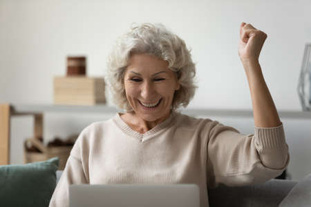 Photo pour Overjoyed positive mature woman using laptop close up, looking at screen, reading good news in message in social network or email, great shopping offer, celebrating win, sitting on couch at home - image libre de droit