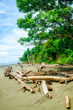 Beach landscape in Corcovado National Park, Costa Rica