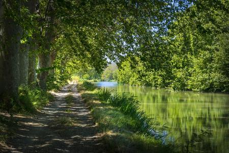 Vue du Chemin de hallage sur le bord du Canal du Midi