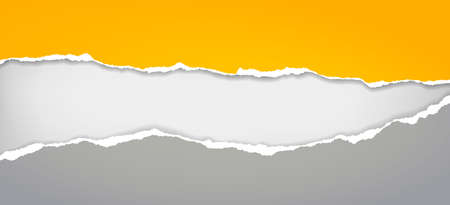 Illustration for Torn, ripped yellow and grey paper strips with soft shadow are on white background for text. Vector illustration - Royalty Free Image