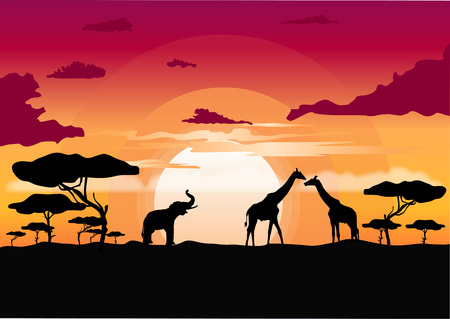 Illustration pour African sunset in the savannah with silhouette of giraffe, elephant and lone acacia tree - image libre de droit