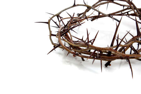 A crown of thorns on a white background