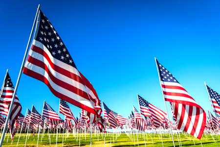 Photo pour A large group of American flags. Veterans or Memorial day display - image libre de droit