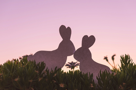 Photo pour Creative  photo of two silhouette paper rabbits in the chamomile flowers and green grass on the sunset sky background. Concept - image libre de droit