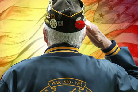 Foto per American Military Veteran Saluting at Memorial Day Ceremony - Immagine Royalty Free
