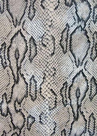 abstract snake texture closeup, danger pattern details