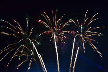 firework diversity, night carnival details