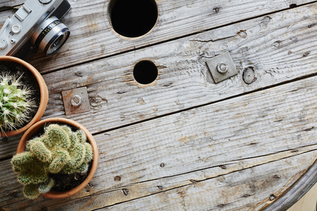 two cactuses and analog camera on used industrial cable drum