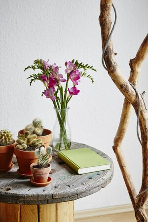Photo pour urban side table variety of cacti and upcycling ideas - image libre de droit