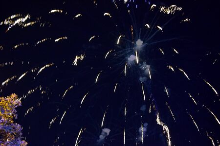 Foto per Festive salute in the night sky. Explosions of fireworks and pyrotechnics in the sky. - Immagine Royalty Free
