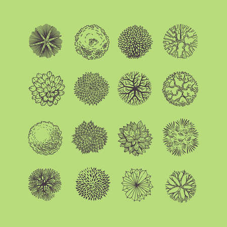 Illustration pour Trees top view. Different plants and trees vector set for architectural or landscape design. View from above - image libre de droit