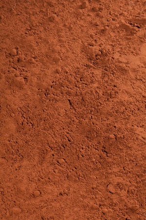 cacao powder, or chocolate powder for choc concepts