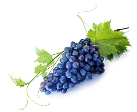 Foto für Bunch of fresh tempting fresh purple table grapes with green vine leaves on a white background - Lizenzfreies Bild