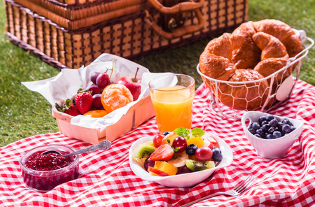 Healthy vegetarian or vegan picnic with a delicious spread of fresh fruit, golden croissants, berry jam and tropical fruit salad on a red and white tablecloth alongside a hamper on green grass
