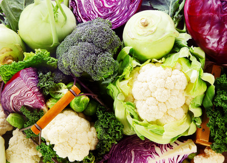 Background of healthy fresh cruciferous vegetables with brioccoli, cabbage, cauliflower, brussels sprouts kale and kohlrabi, close up full frameの写真素材