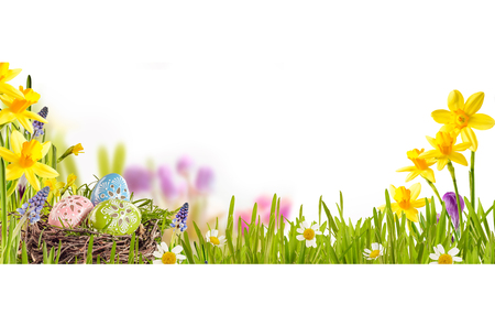 Photo for Easter background with colorful patterned Easter eggs in a bird nest amid green grass and spring flowers over white with copyspace, wide angle view - Royalty Free Image