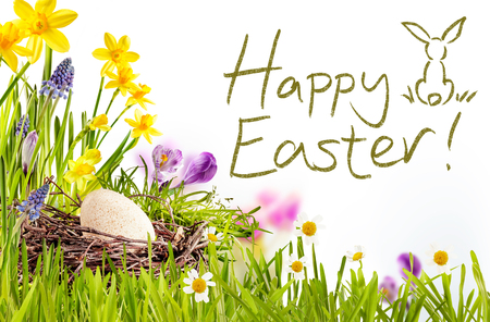 Photo pour Happy Easter text surrounded by green grass, flowers and egg inside nest - image libre de droit