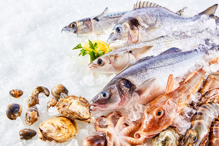 Foto de High Angle Still Life of Variety of Raw Fresh Fish and Shellfish Chilling on Bed of Cold Ice in Seafood Market Stall with Copy Space - Imagen libre de derechos