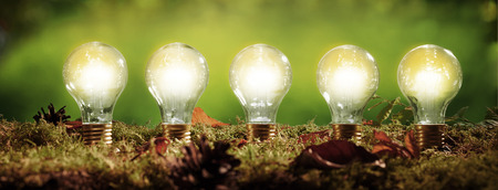 Panorama banner with five glowing light bulbs positioned in moss over a blurred green outdoor background in an ecological and environmental concept