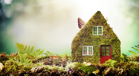 Eco friendly house concept with moss covered model home outdoors in a garden with copy space amongst green ferns