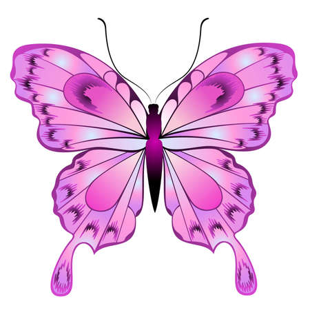 Illustration pour Beautiful butterfly for a design - image libre de droit