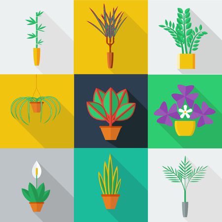 Illustration for Illustration of houseplants, indoor and office plants in pot. Flat style vector icon set - Royalty Free Image