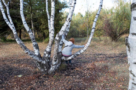 There is an unusual birch tree in the autumn park. A woman, walking in the park, sat down to rest on a tree branch.