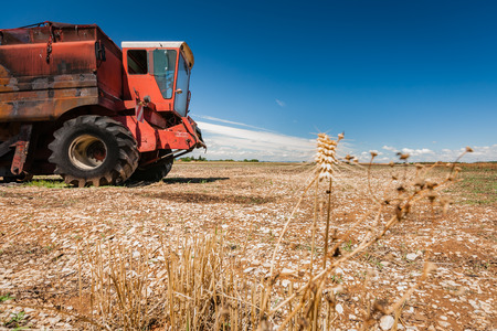 Old burned agriculture combines in a flattened grainfield under a blue sky with white clouds in the countryside of france