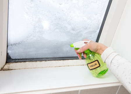 Photo pour Woman hand spraying white vinegar solution natural cleaner on ugly unhealthy mold on home window. Natural eco friendly lifestyle cleaning products in home. - image libre de droit