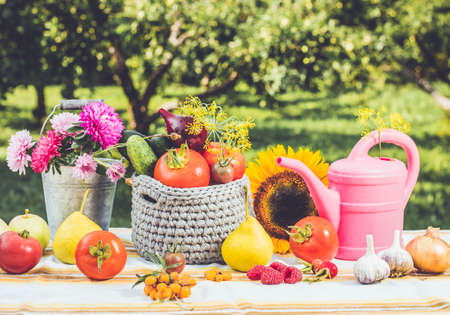 Foto für Fun and playful set of different vegetables and fruits on the table with bucket full of asters and pink watering can outdoors in autumn, harvest concept. Blur outdoors background, studio light. - Lizenzfreies Bild