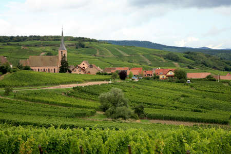 View from Vosges to village in France - Alsace. Route des vines.