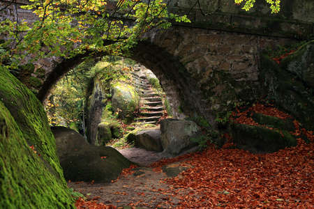 The secret garden landscaping  Old stone bridge and stairs