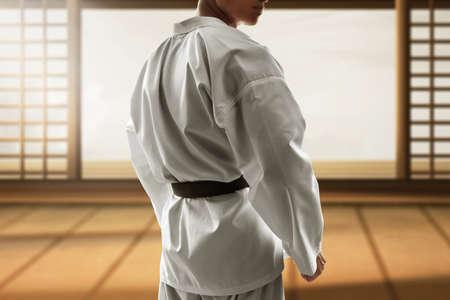 Photo pour Martial arts fighter - image libre de droit