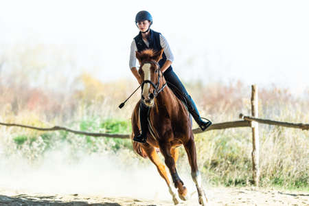 Photo for Young pretty girl - riding a horse with backlit leaves behind in  autumn - Royalty Free Image