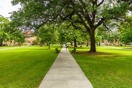 Photo for Typical American college campus. - Royalty Free Image